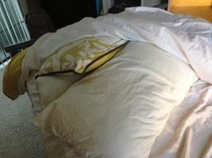 Pillow Mountain Layers